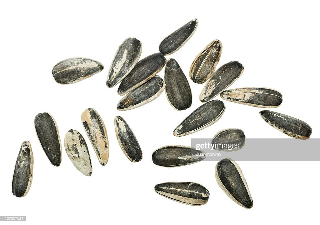 Sunflower seeds from above