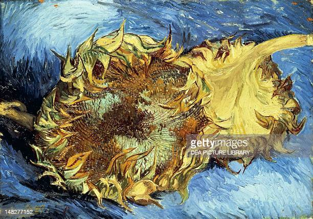 Sunflowers by Vincent van Gogh oil on canvas 432x61 cm New York The Metropolitan Museum Of Art