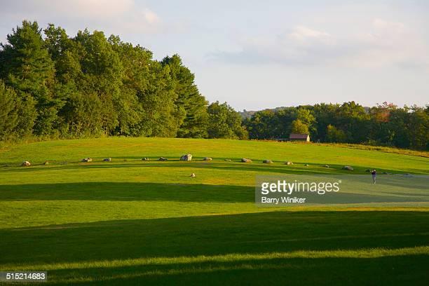 Sunlight and shadows on green hillside
