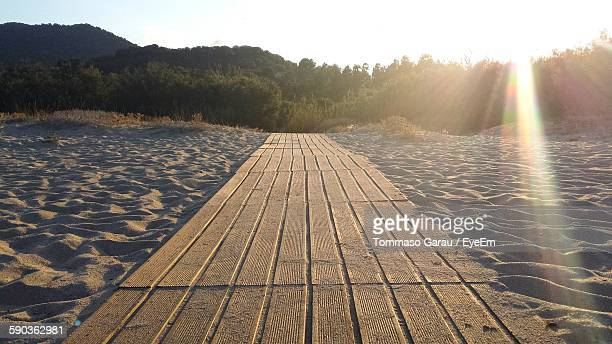 Sunlight Falling On Textured Tire Tracks On Sand At Beach