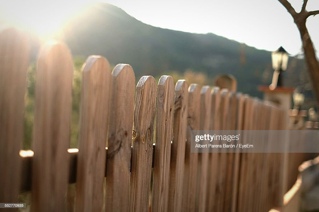 Sunlight Falling On Wooden Fence