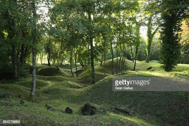 Sunlight highlights craters created by artillery bombardments during the fierce battle of Les Eparges hill during World War I on August 26 2014 near...