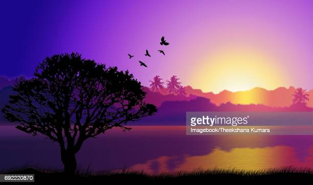 Sunlight lake of Sri Lanka