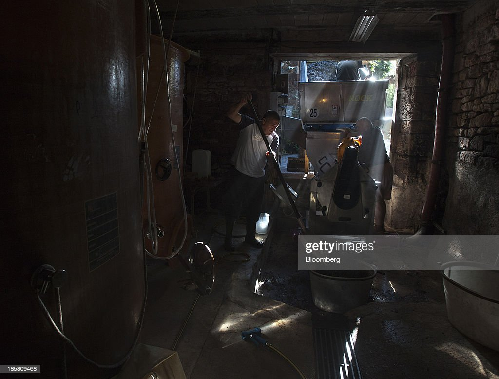 Sunlight streams into a harvest storage room as fruit pickers separate fer servadou grapes from their stalks at Jean-Luc Matha's vineyard in Clairvaux, France, on Thursday, Oct. 24, 2013. France's stocks of wine fell to the lowest in at least 12 years after the country's production plunged 19 percent last year, crop office FranceAgriMer said. Photographer: Balint Porneczi/Bloomberg via Getty Images