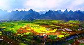Sunlit colorful fields in Guizhou Xingyi