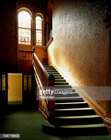 Sunlit interior carpeted staircase