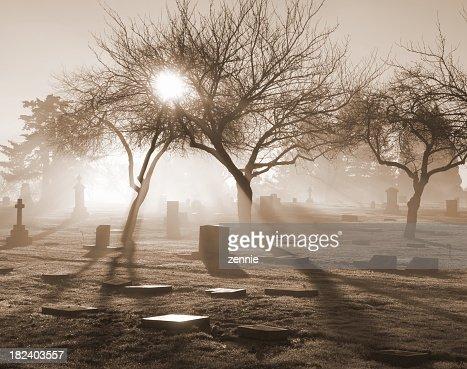 Sunlit misty graveyard in various gray tones