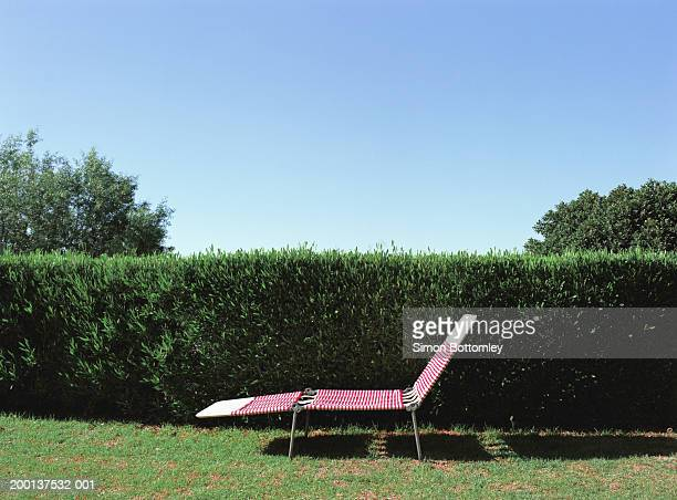 Sunlounger by hedge
