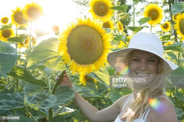 Sunlower field