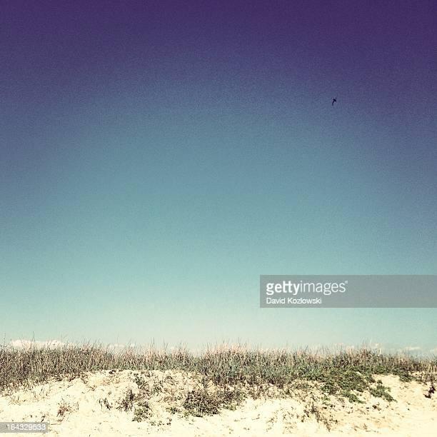Sunny Beach Galveston Texas