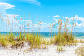 sunny St. Pete beach with sand dunes and blue sky in Florida