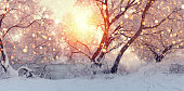 Sunny Christmas morning. Sun illuminate snowflakes. Snowfall at xmas morning. Frosty winter backdrop