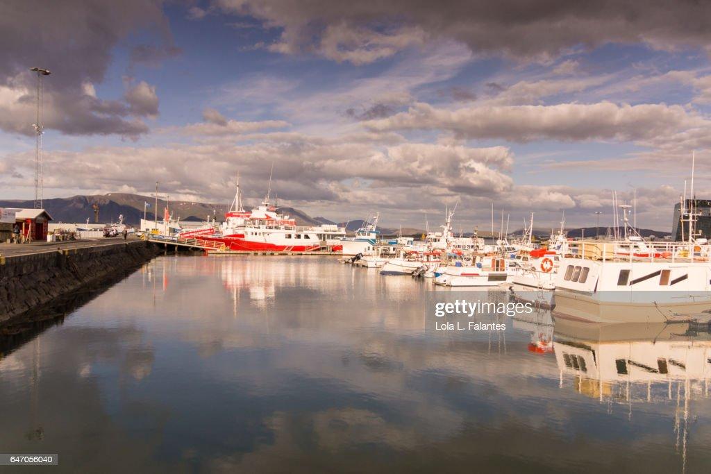 Sunny day at  Reykjavik port : Foto de stock