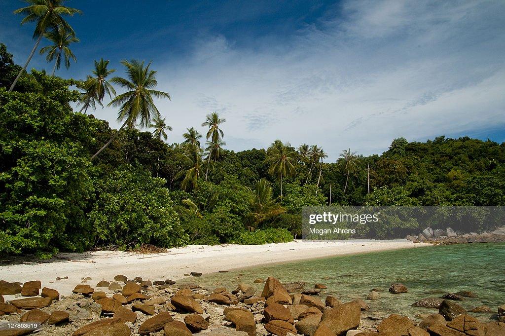 Sunny day beach scene : Stock Photo