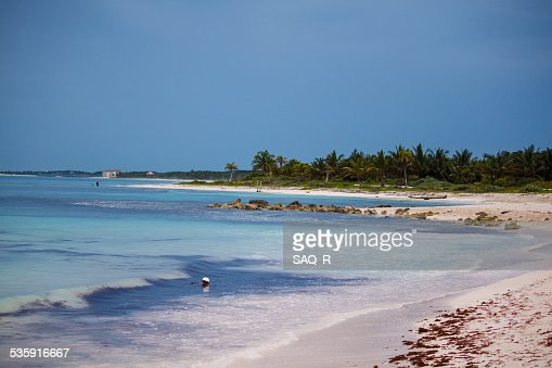 Sunny day in beach : Stock Photo