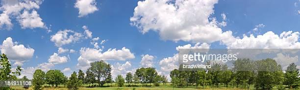 Journée d'été ensoleillée Panorama