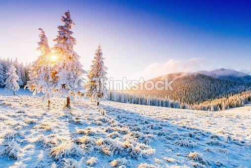 Paesaggio invernale soleggiata foto stock thinkstock for Disegni paesaggio invernale