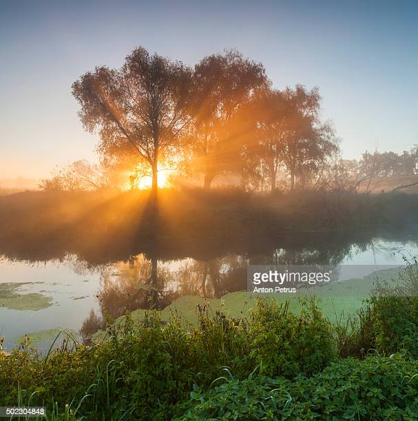 Sunrays in the mist over the river at dawn