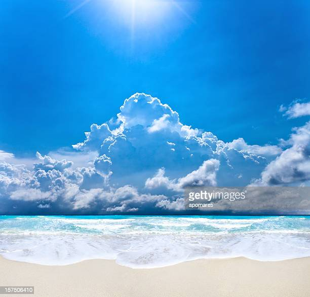 Sunrays on a beach