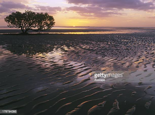 Sunrise and mudflats Port Hedland Western Australia