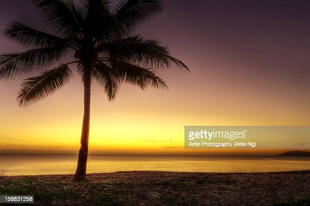 Sunrise at Palm Cove, Cairns, Queensland