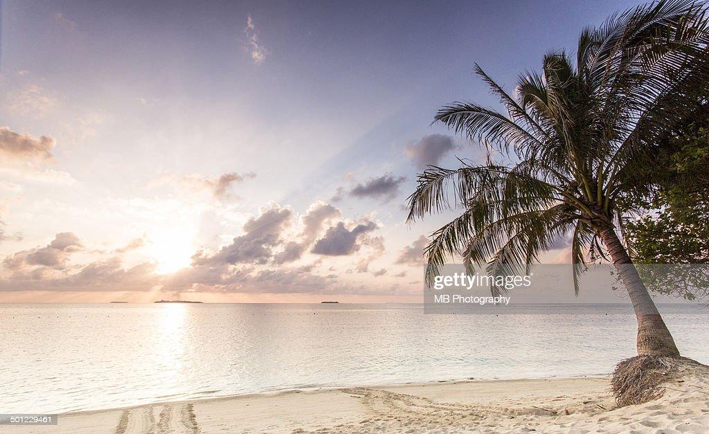 Sunrise at Selingan Beach