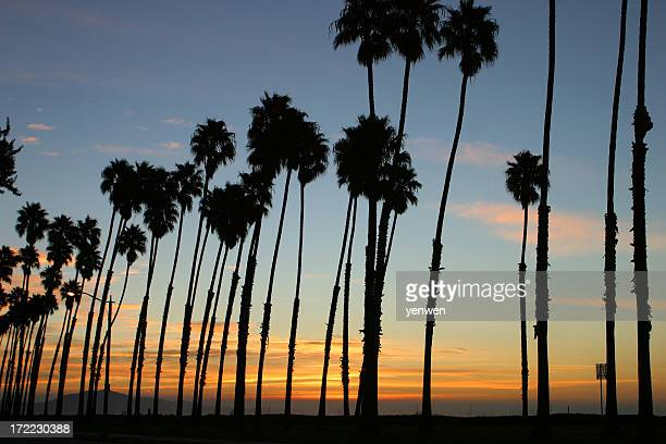 Sunrise at Stearns Wharf, Santa Barbara