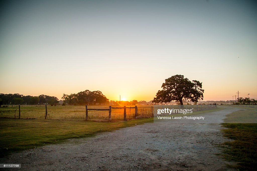 Sunrise at the Cowboys : Stock Photo