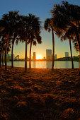 Sunrise in Orlando, Lake Eola, Sunlight Flares