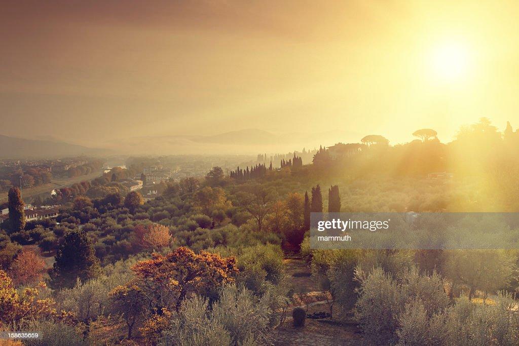 Sunrise in Tuscany : Stock Photo