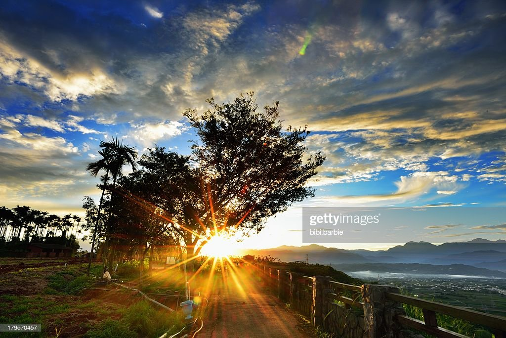 Sunrise light : Stock Photo