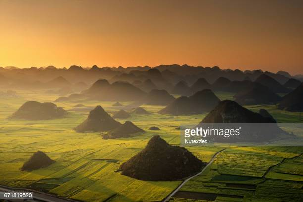 Sunrise of rapeseed flower field in Luoping ,China