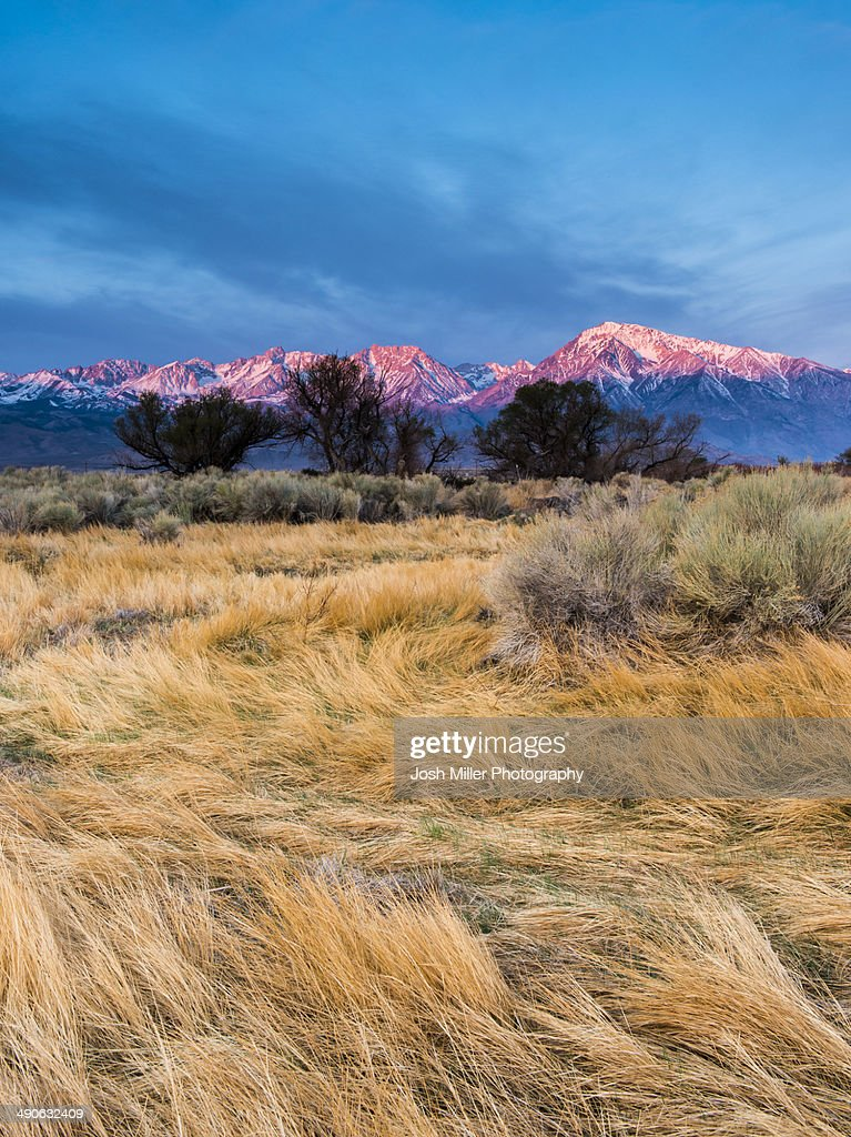 Sunrise on Mount Tom and Basin Mountain
