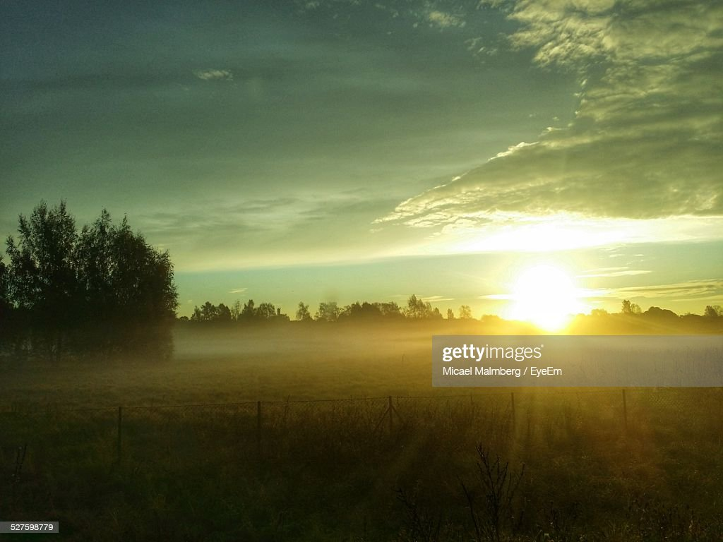 Sunrise Over Foggy Field : Stock Photo