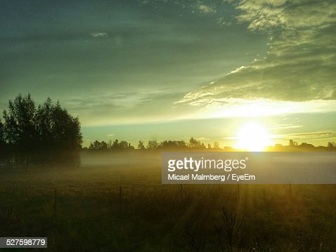 Sunrise Over Foggy Field