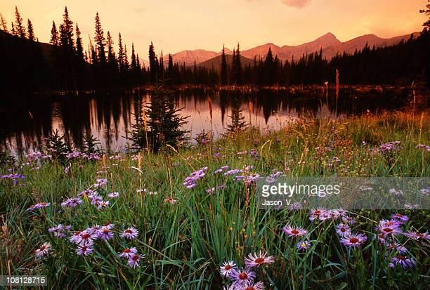 Lever du soleil sur le lac de montagne
