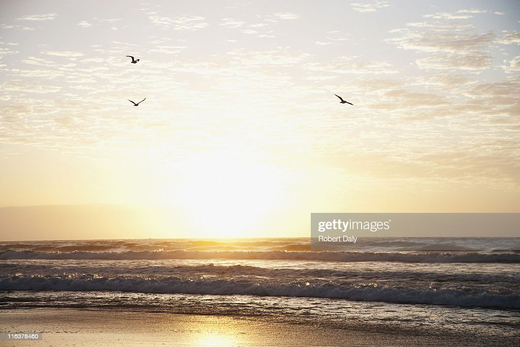 Sunrise over ocean : Stock Photo