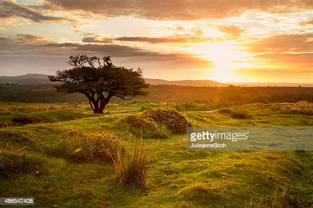 Sunrise over the moors, England
