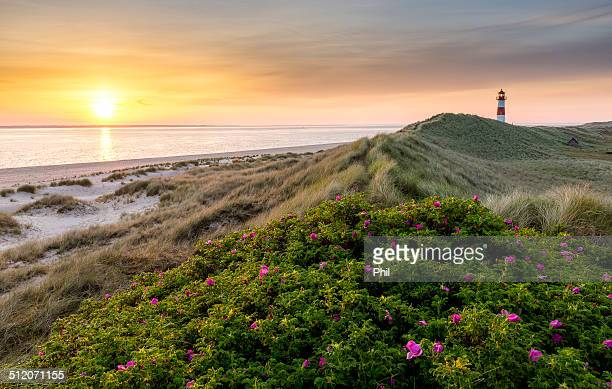 Sunrise over the north sea, Sylt, Germany