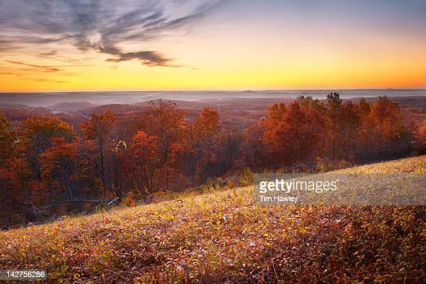 Sunrise over the Ozarks, fall color