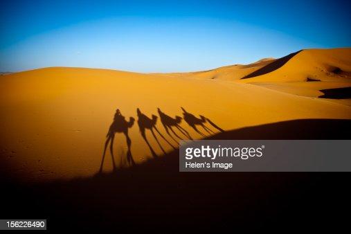 Sunrise Sahara