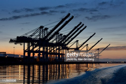 Sunrise Shipping Cranes