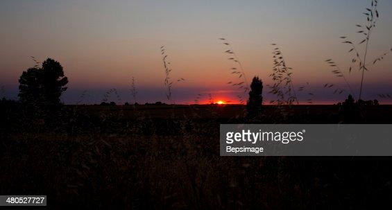 Lever du soleil, campagne espagnole : Photo