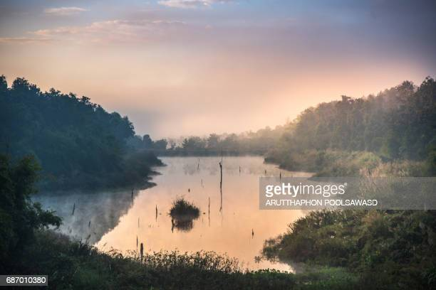 Sunrise with mist on the small lake at rain forest Thailand