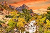 Sunset at Watchman  peak along the Virgin river in Zion National Park, Utah