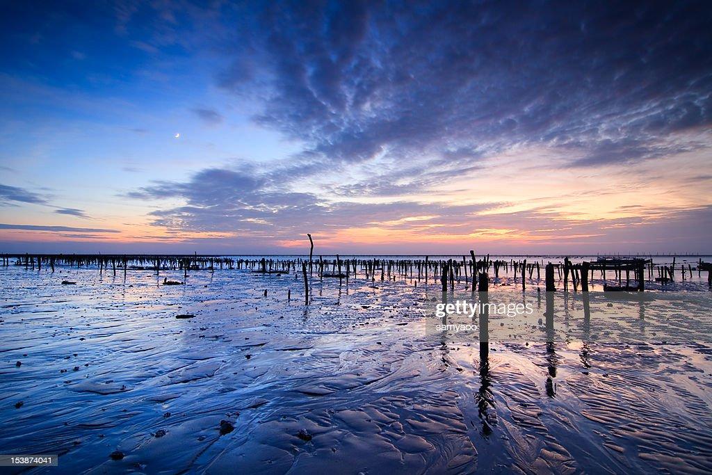 Sunset at beach : Stock Photo