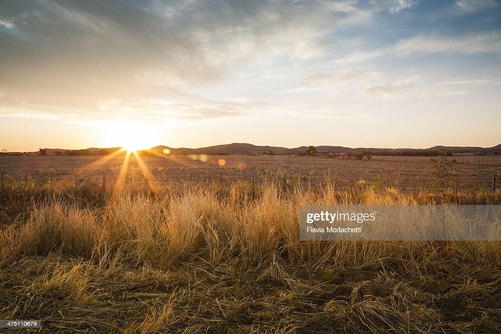 Sunset at Camino Real