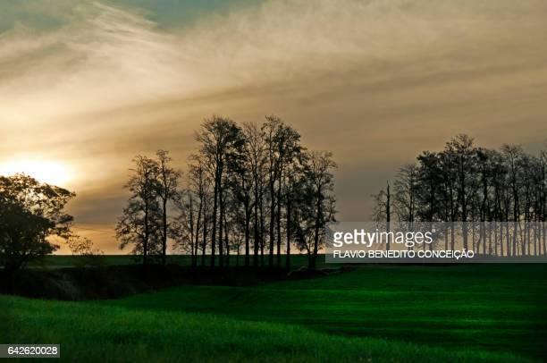 Sunset at dusk on an agriculture farm
