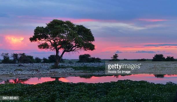 Sunset at Nehale Waterhole