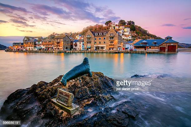 Sunset at Nelson the Seal, Looe, Cornwall